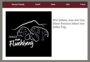 zwinger-vom-fluehberg.com