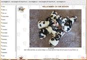 www.beagles.ch