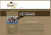 golden-swissline-beagle.ch