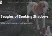 www.ofseekingshadows.ch