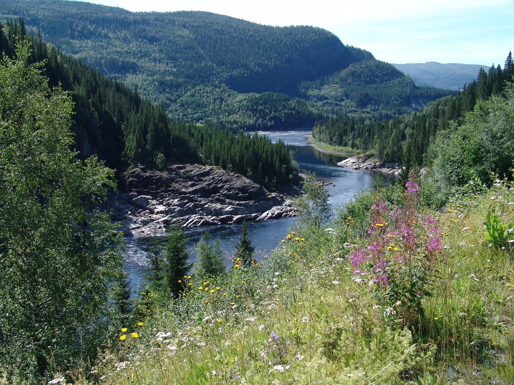 Lachsfluss in Norwegen