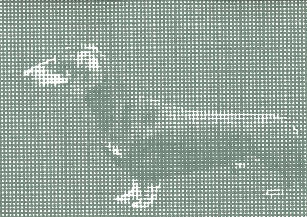 (017) - LOÏC RAGUÉNÈS