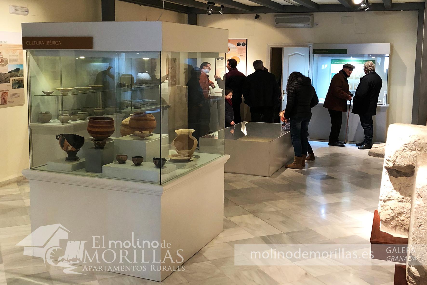 Restos de vasijas y enseres fenicios e íbero-romanos encontrados en los yacimientos de Galera