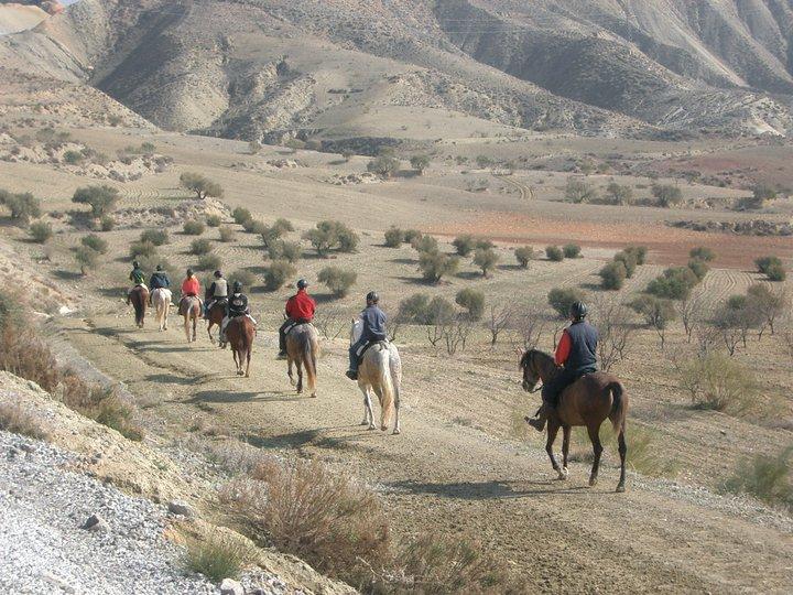 Turismo activo en el Altiplano de Granada: Paseos a caballo por las sierras y badlands