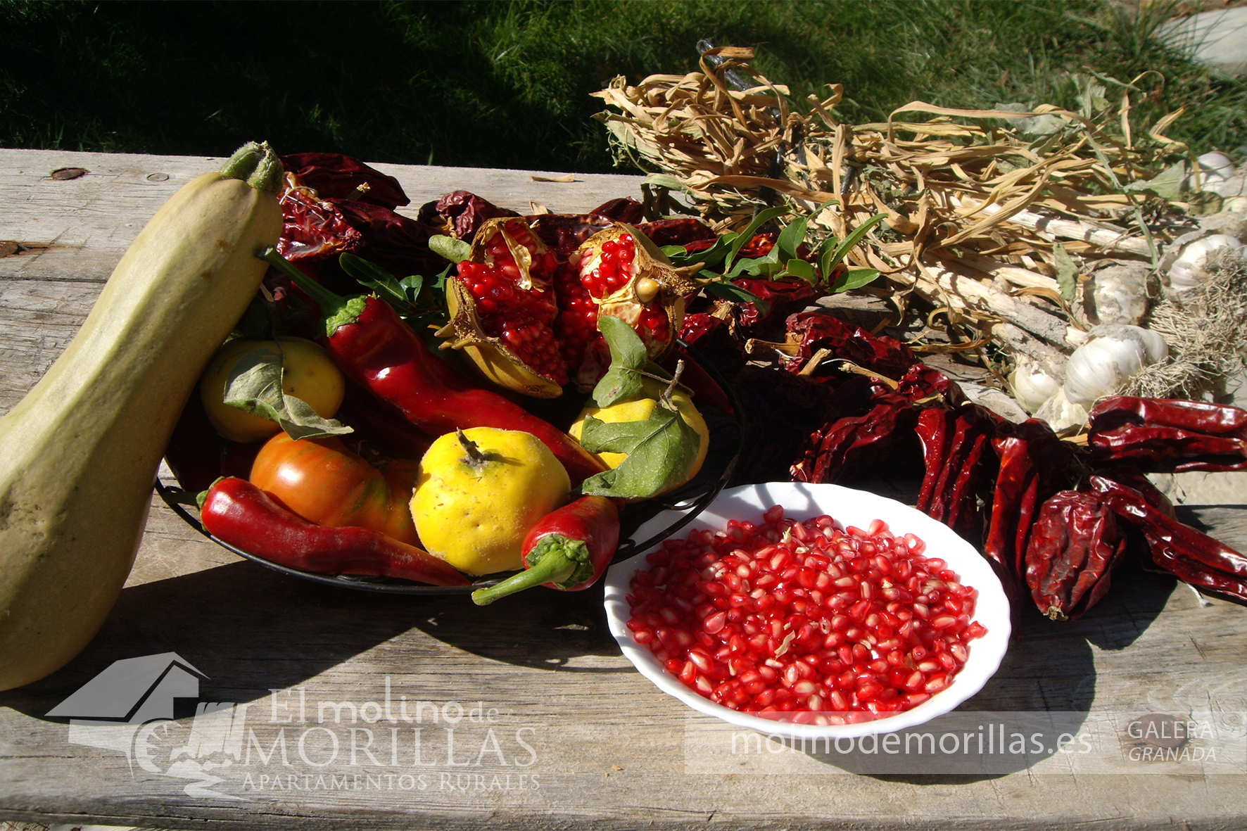 Hortalizas de la huerta y frutas autóctonas de Galera