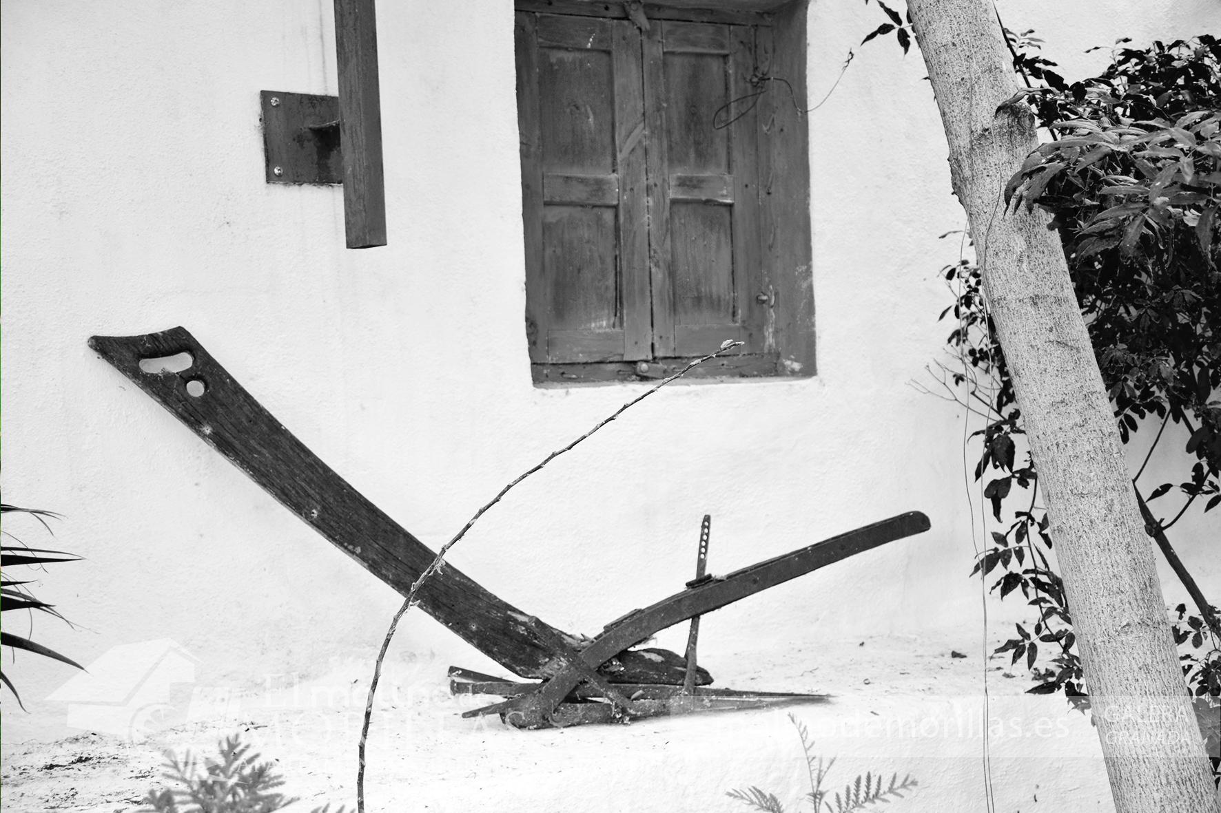 Ornamentación antigua: herramienta de agricultura