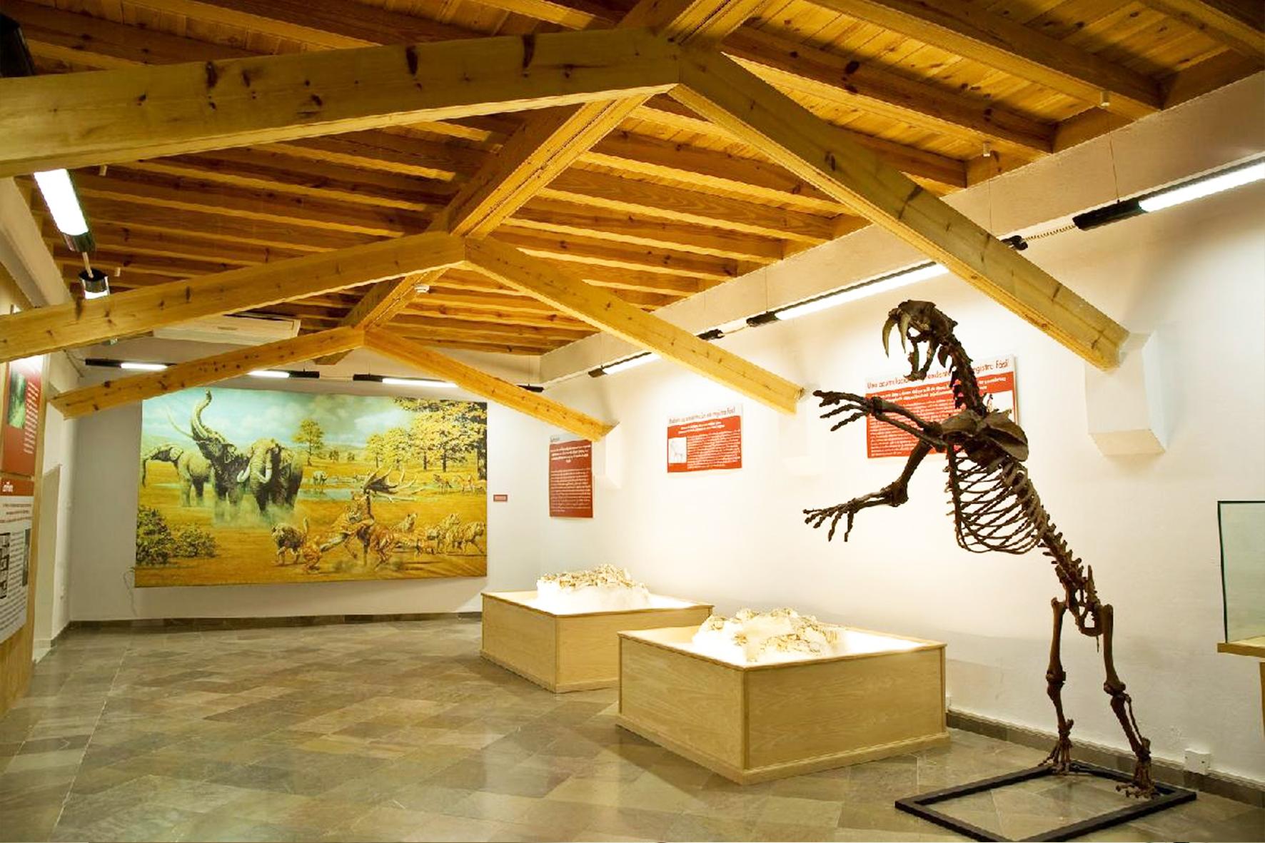 Museo de Prehistoria y Paleontología de Orce. Foto: granadaaltiplano.org