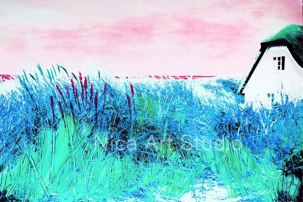 Gras am Haus, 2018, 30 x 20 cm, Fotografie mit Ölfarbe