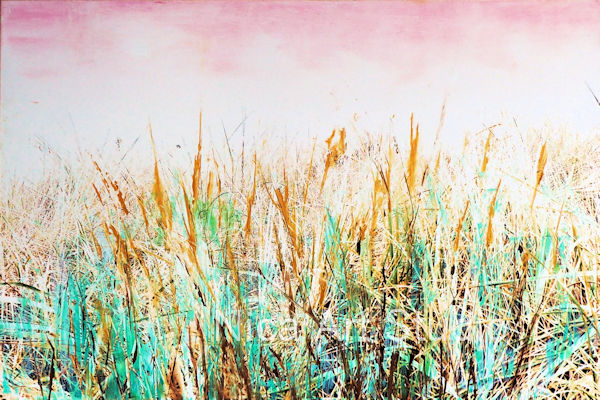 Gras, 2018, 30 x 20 cm, photography with oil color