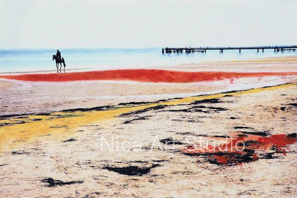Pferd am Strand mit rosa Himmel, 2019, 30 x 20 cm, Fotografie mit Ölfarbe, in der Galerie KuRa Hamburg