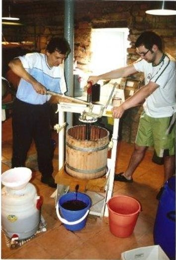 Wein pressen