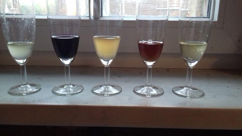 Weißwein, Rotwein, Birnenwein, Hagebuttenwein, Apfelwein, von links nach rechts