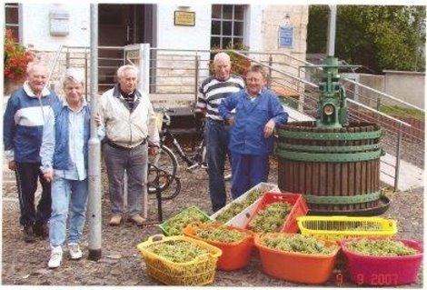 Weinernte 2007