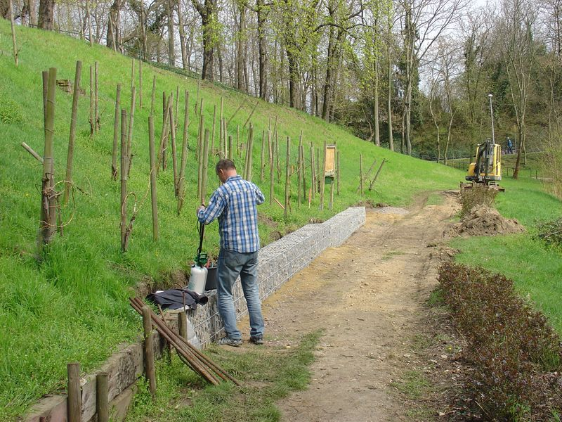 Unser Weinberg wird wieder aufgebaut, die Arbeiten sind in vollem Gange !