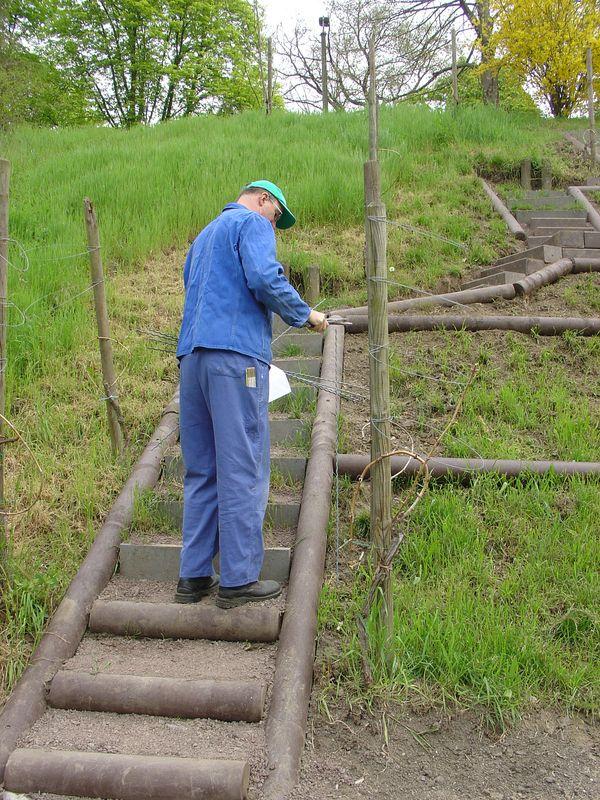 Vorbereitung für die Errichtung der Drahtanlage