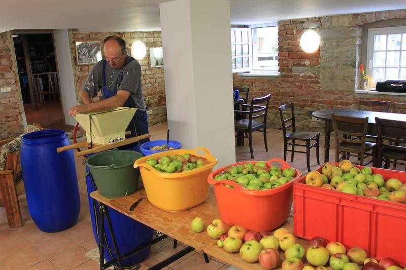 Äpfel zum Maischen