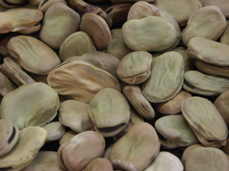 Secret recipe: Sardinian fava beans