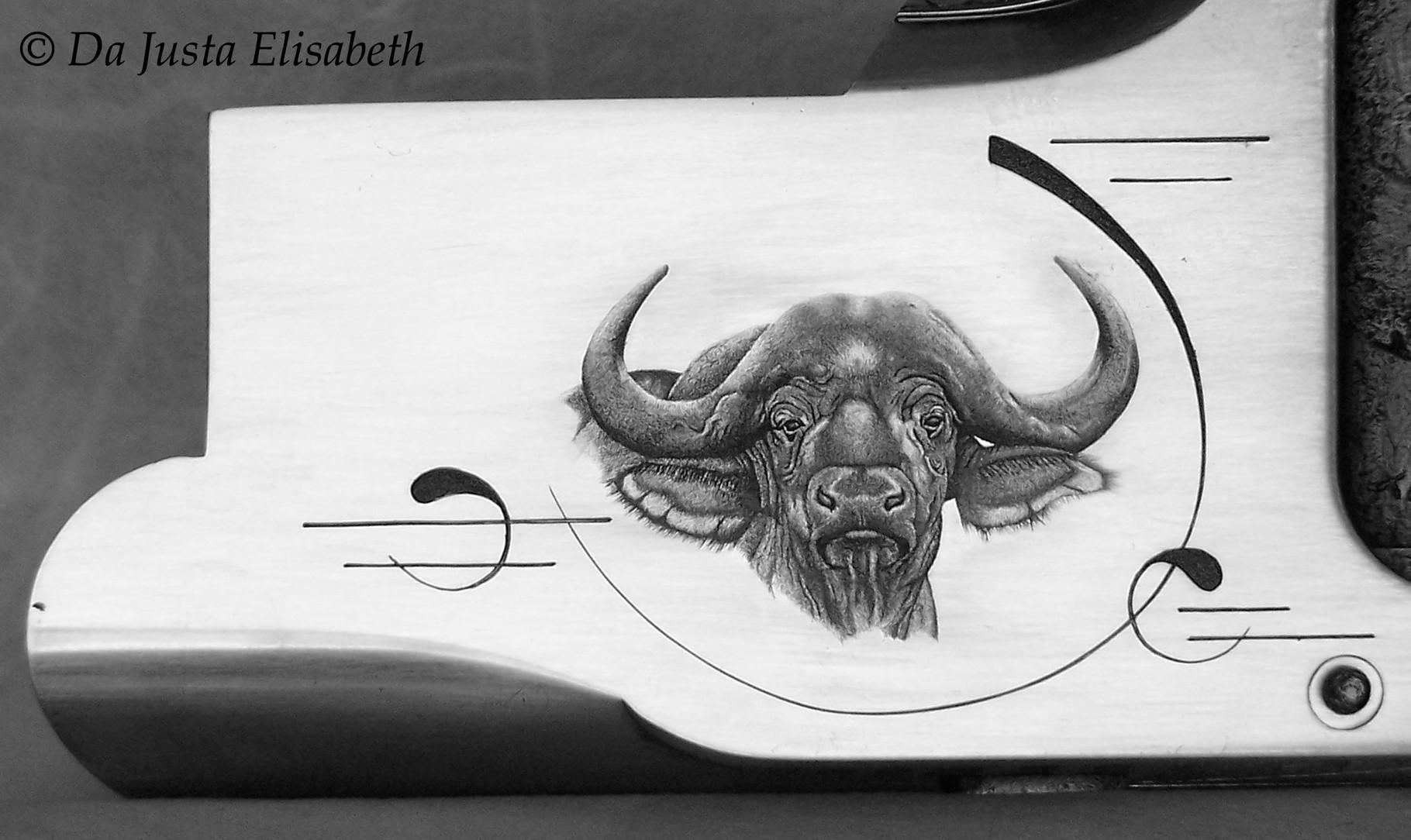 B25 & buffalo