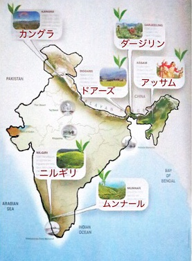ダージリン、アッサム、ニルギリは有名。それ以外にもインド紅茶局がおすすめする産地がこちら