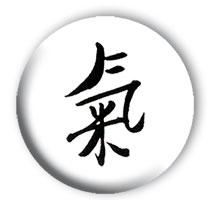 explications Qi Gong traditionnel et Arts Martiaux Internes chinois du Wudang à Rennes et Côte d'émeraude