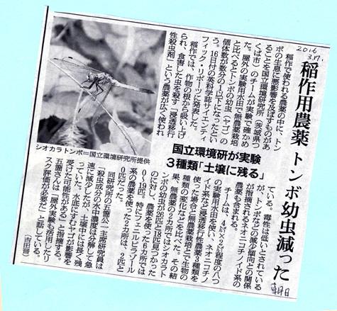 稲作農薬のトンボへの影響を報ずる記事(3/17「朝日」朝刊から)