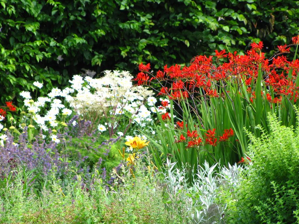 Le jardin maison d 39 hotes au jardin des deux ponts for Au jardin des deux ponts abbeville
