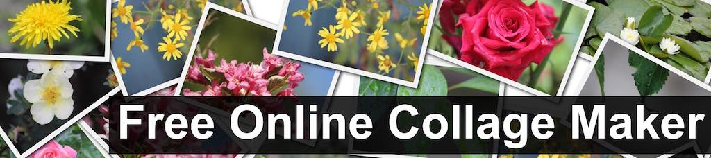 Free Online Photos Collage Maker and Combine Mixed Pictures