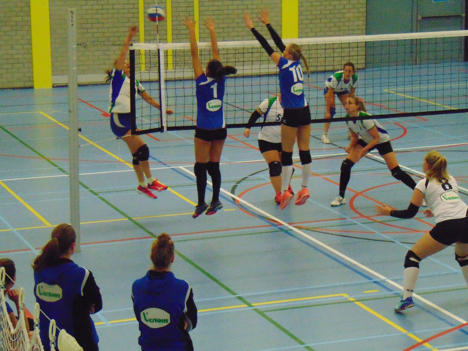 Indelingen Volleybal