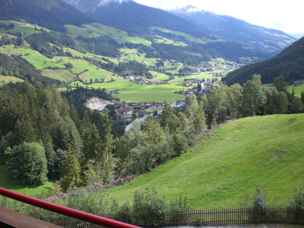 Aussicht von Zimmer 7 auf Wald/Pzg.