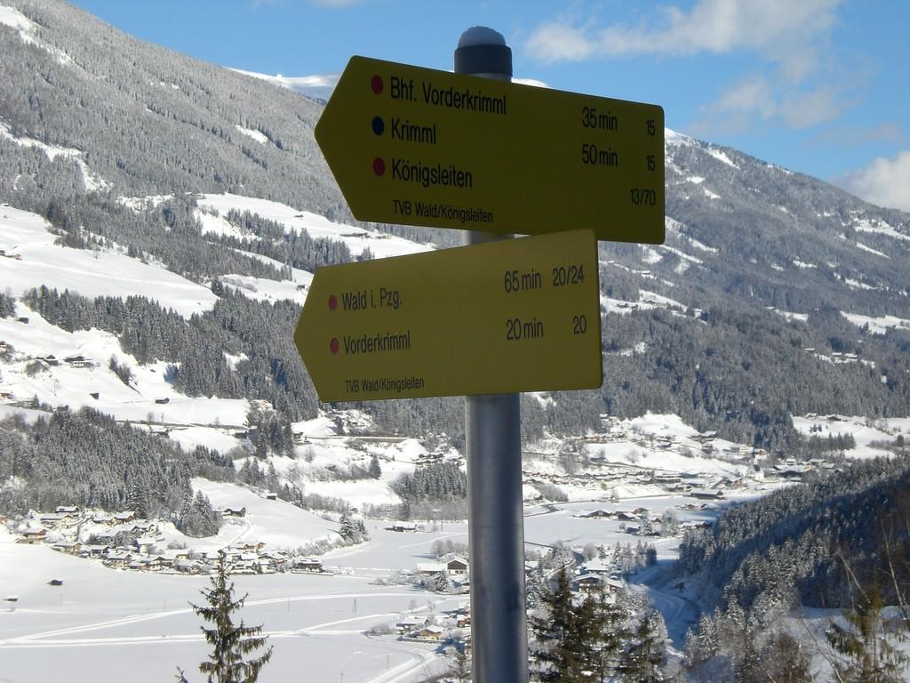 Blick nach Wald im Pinzgau