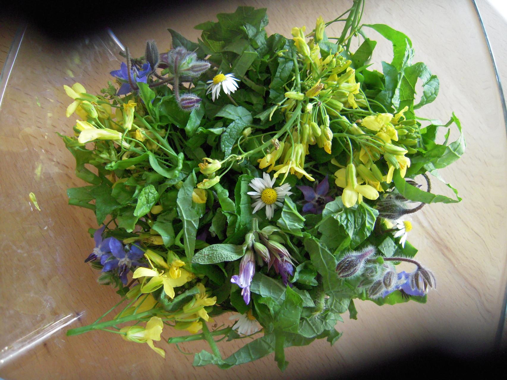 Wildkräuter(blüten)salat