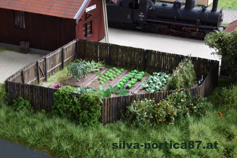 Schmalspur Modul Alt Weitra 1958 Gemüsegarten