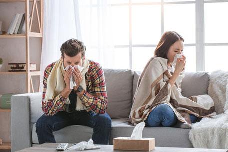 Pollenschutz, mit einem optimalen Luft- und Lichtdurchlass.