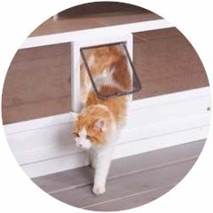 Für Haustiere Katzen- oder Hundeklappe
