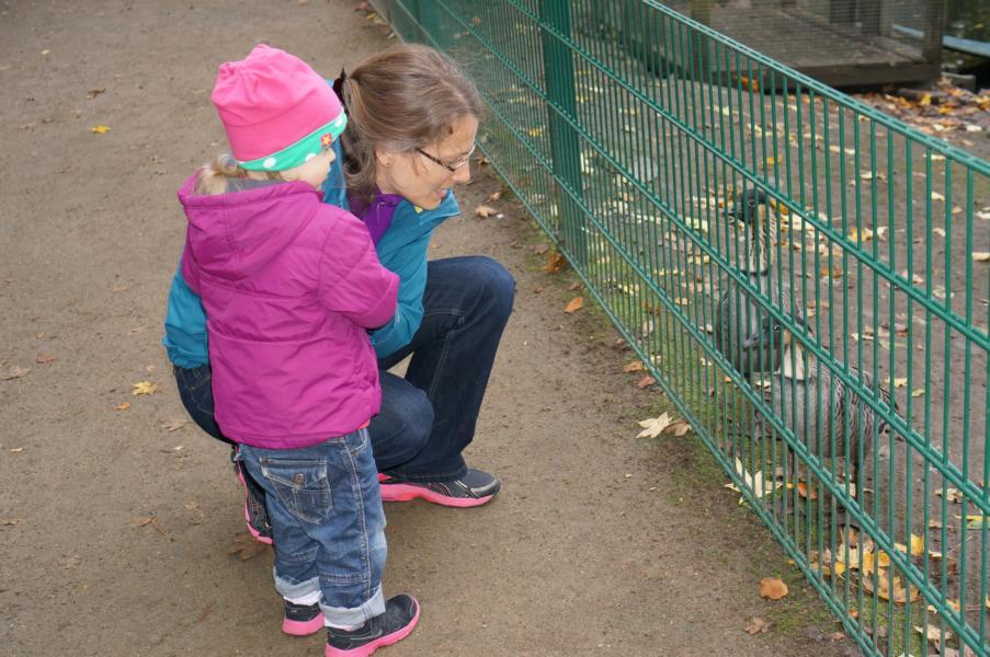 Mit Johanna im Bassumer Tierpark.