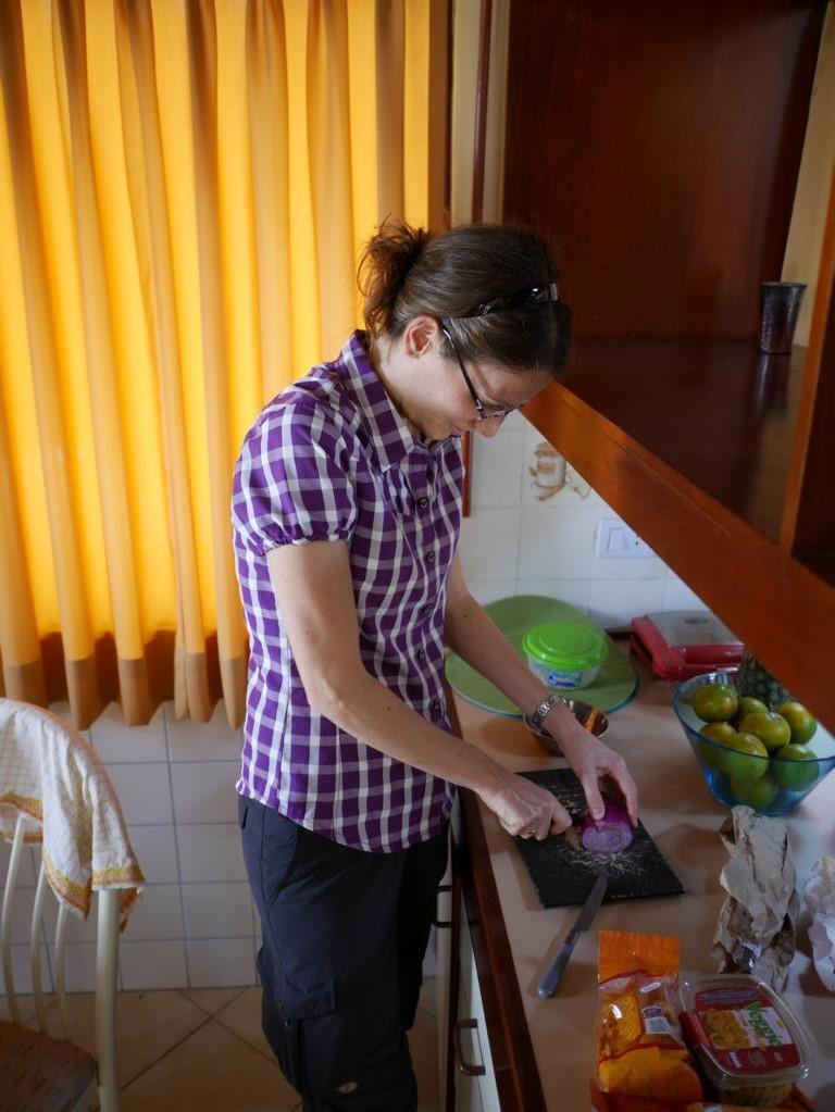 Onions for Guacamole.