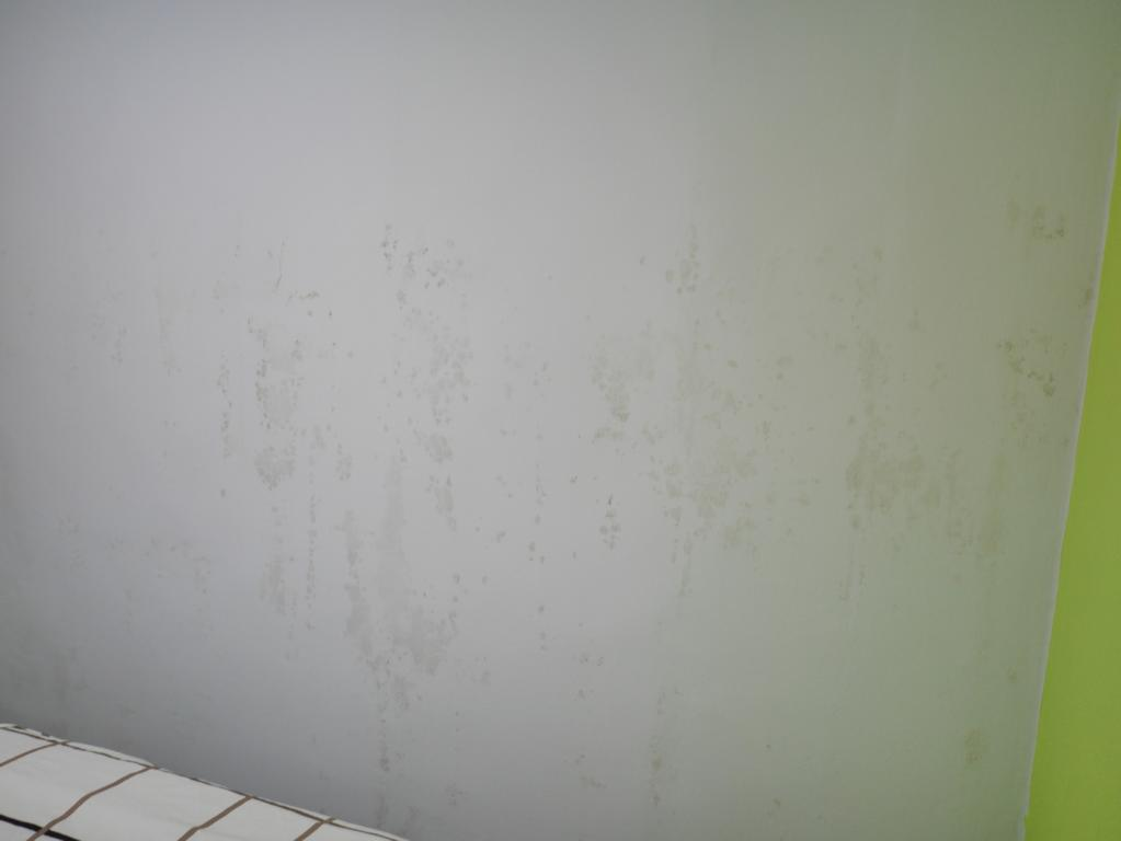 Water stains or mold? In any case, it was damp and cold in the rooms.