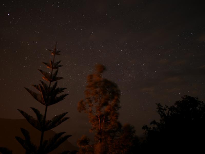 The starry sky.