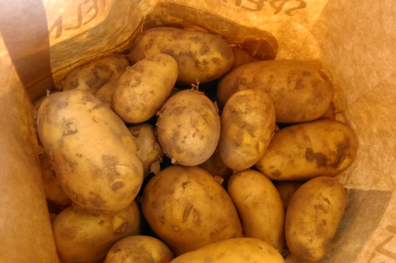 unsere Frühkartoffeln im Hofshop