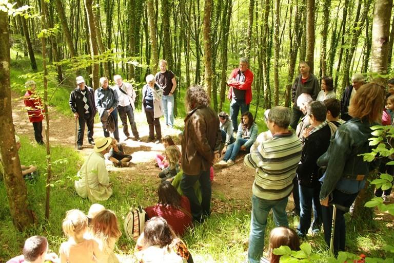 Balade contée dans la forêt de Villecartier