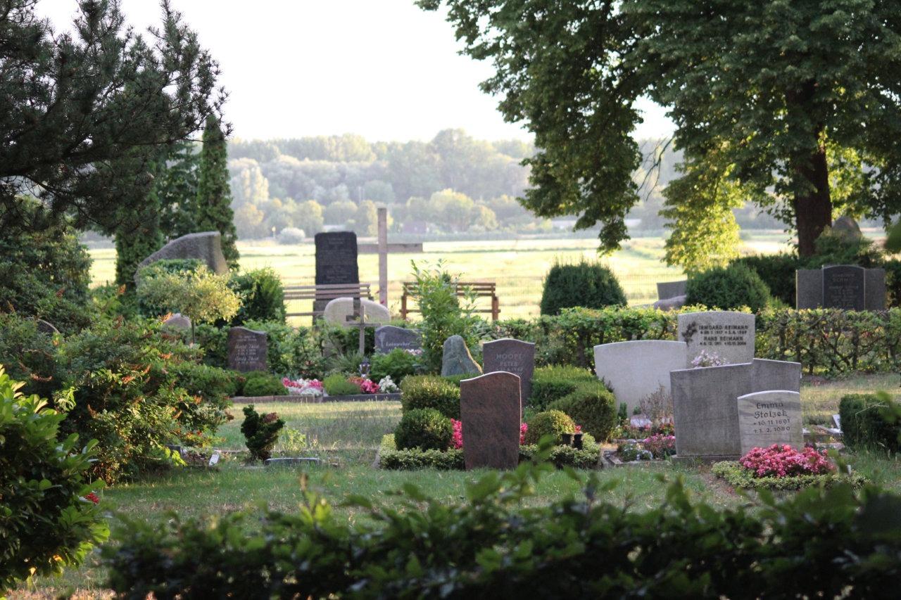 Sarggrabfeld Friedhof Billwerder