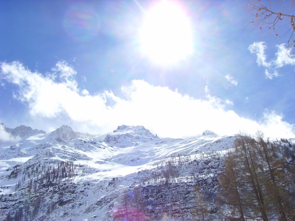 Wintersonne im Schnee