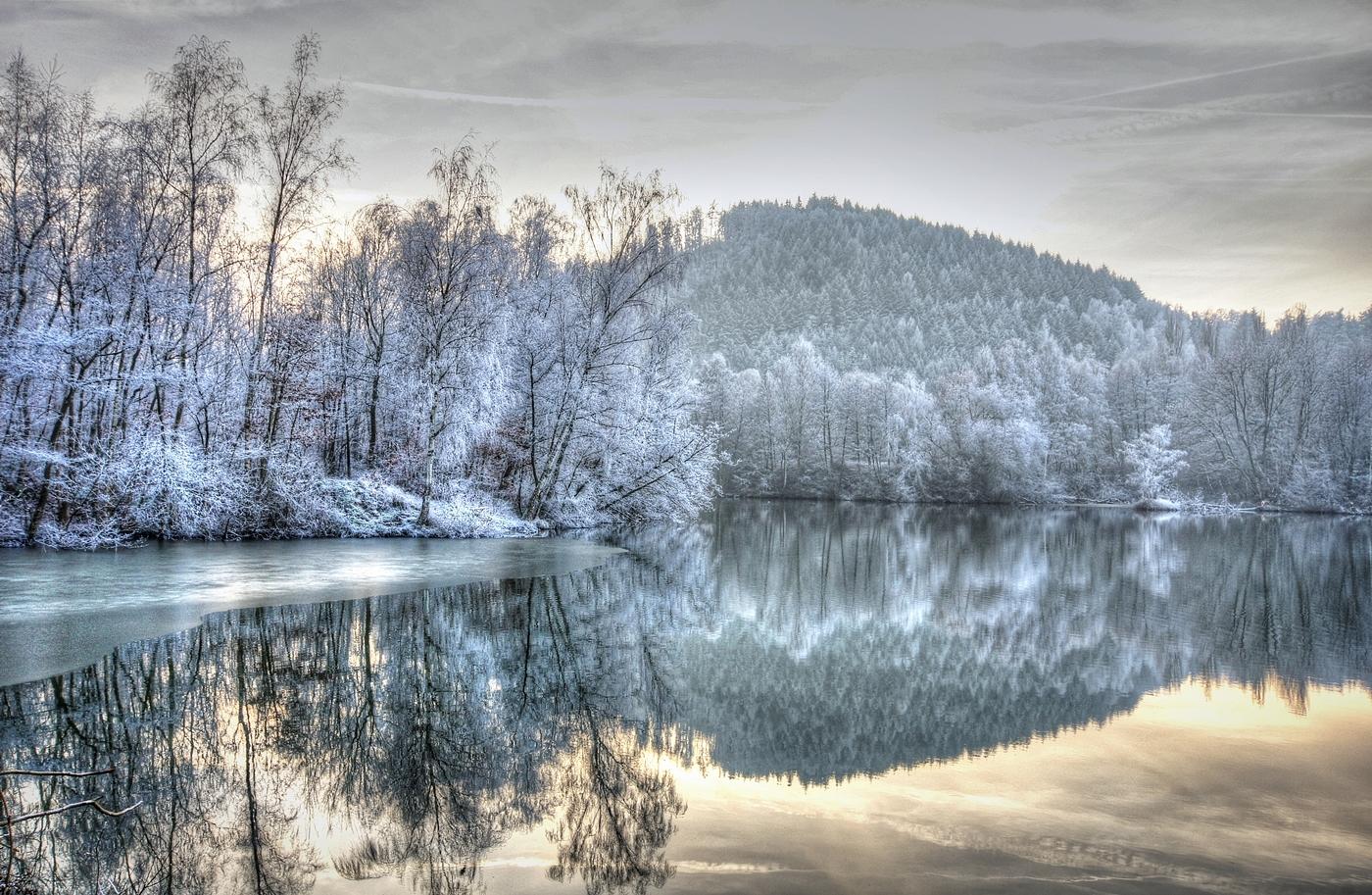 Frühling im Winter -  Andrea Schwarz