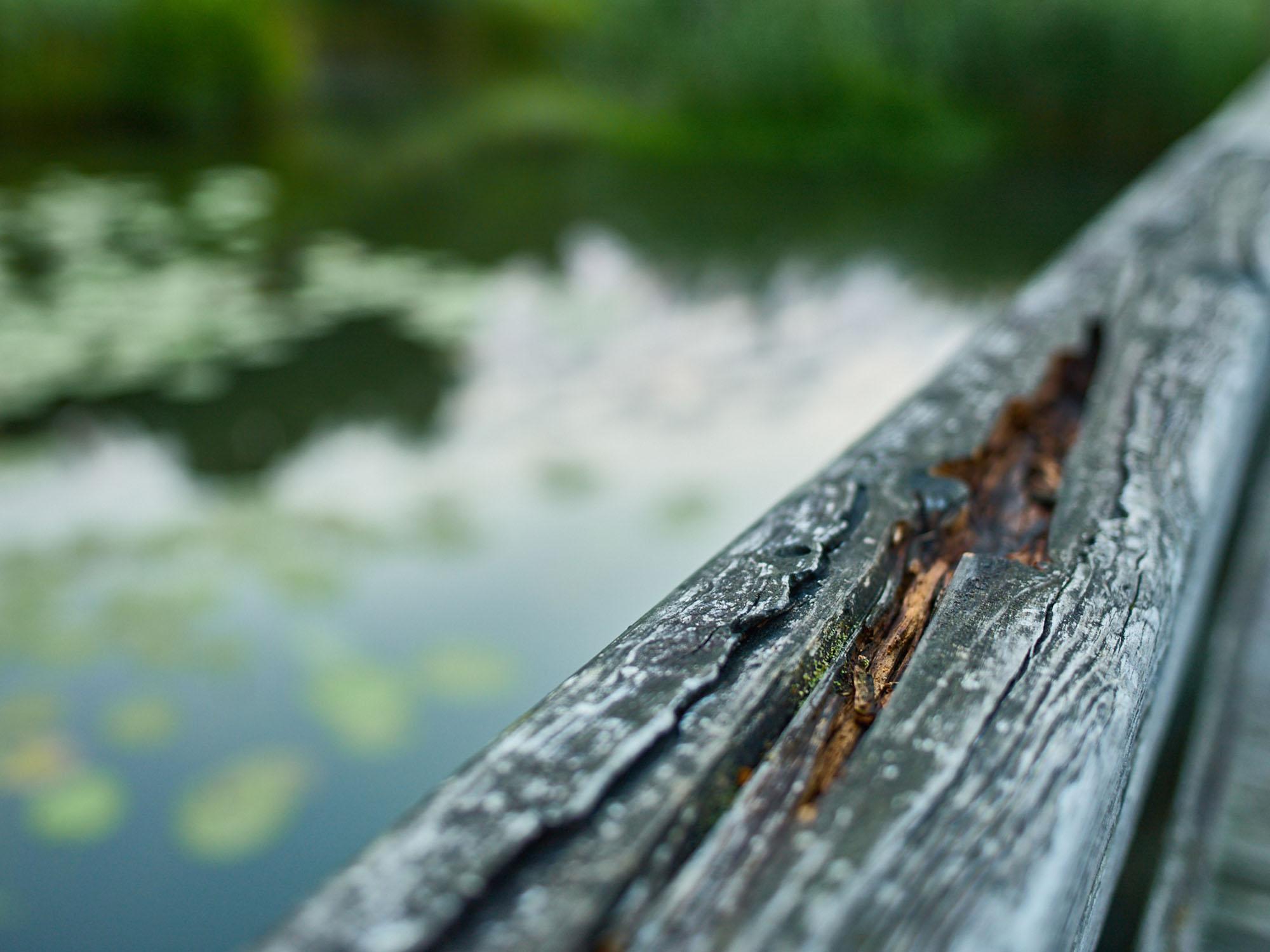 Holz am Höglwörther See