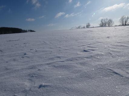 Eiskristalle Schnee