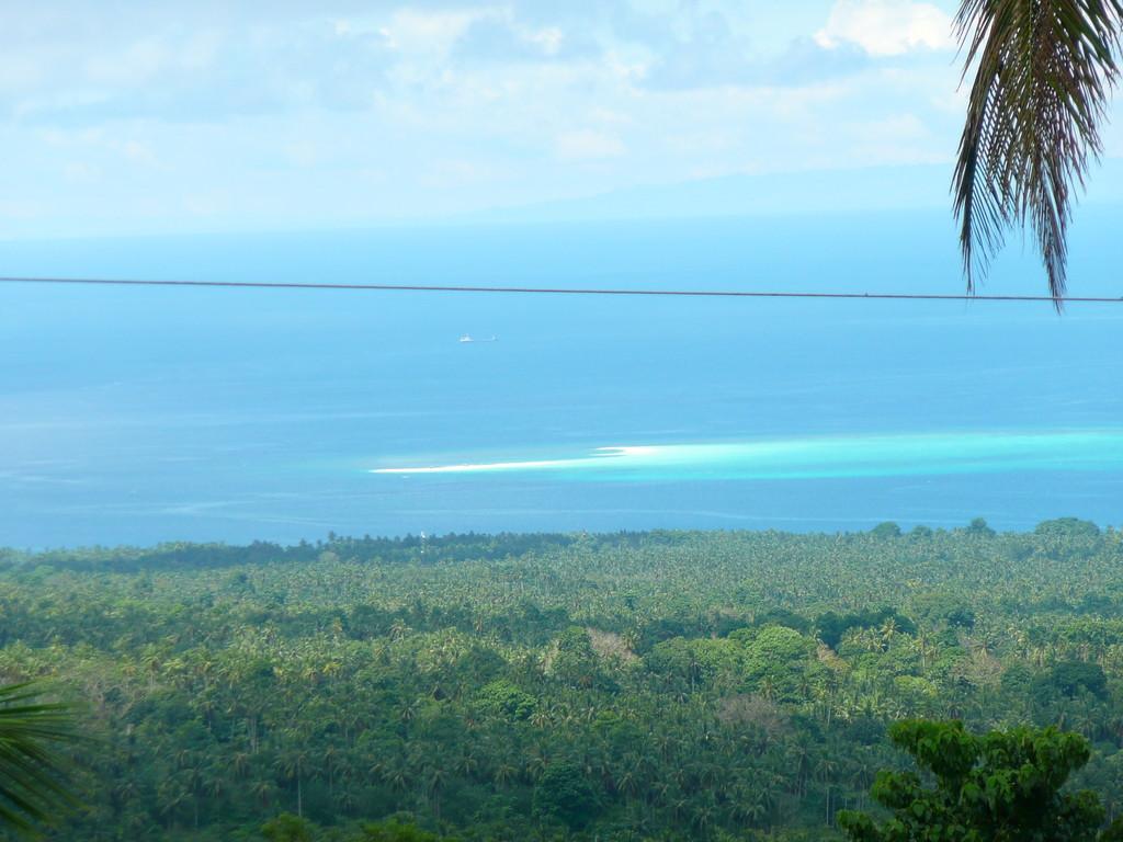 Vista su White Island
