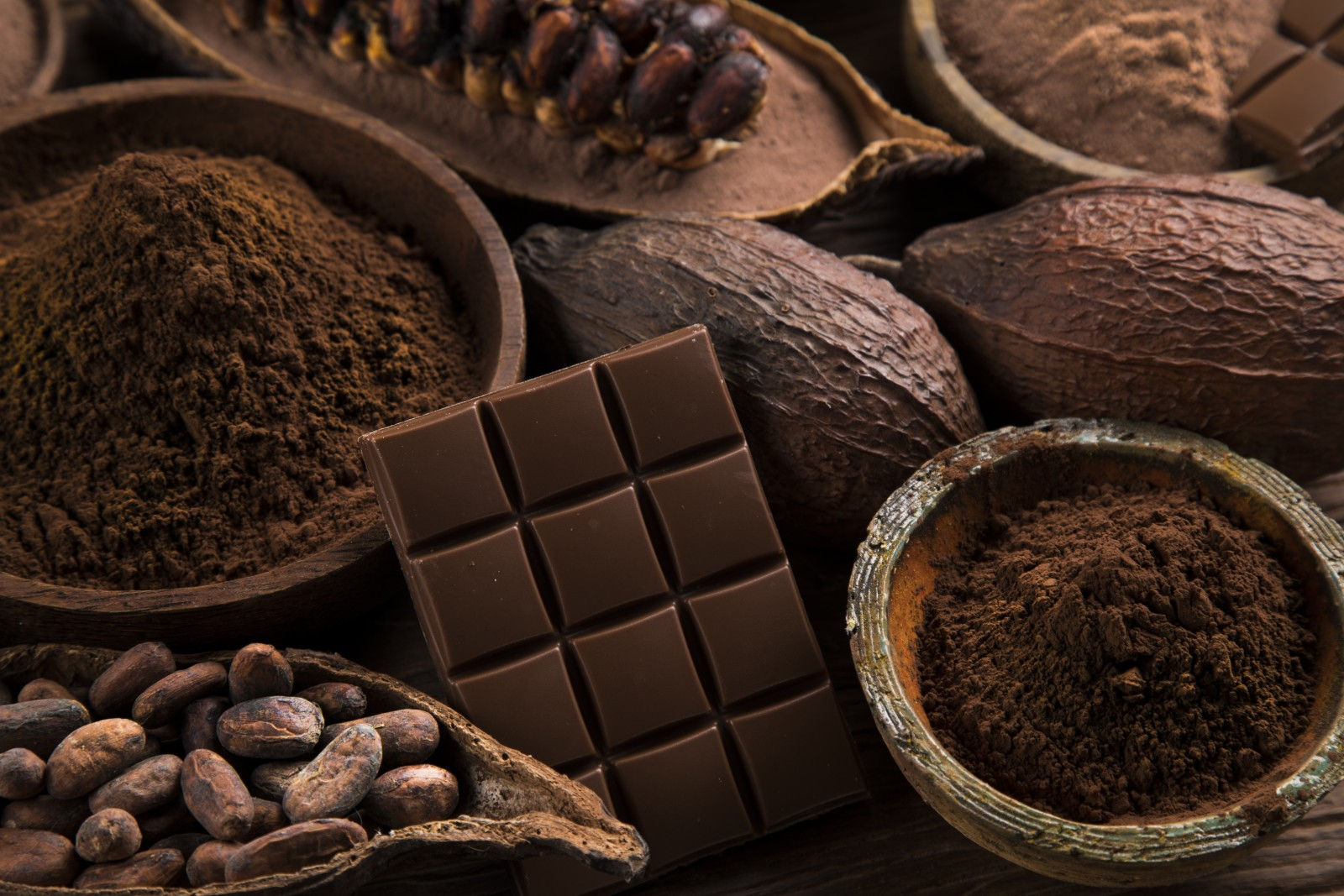 La poudre de cacao fut inventée par Van Houten
