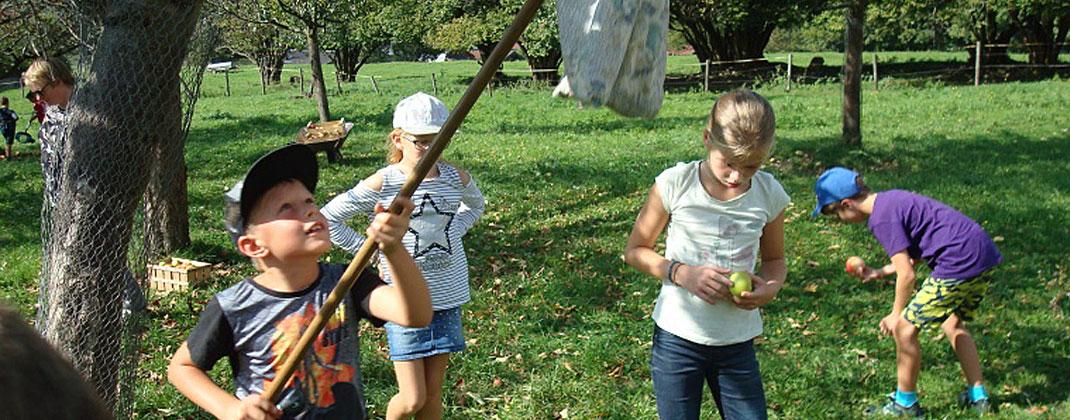 Jugendgruppe, Gartenwichtel Obst- und Gartenbauverein Nußdorf am Inn e.V., 83131 Nußdorf