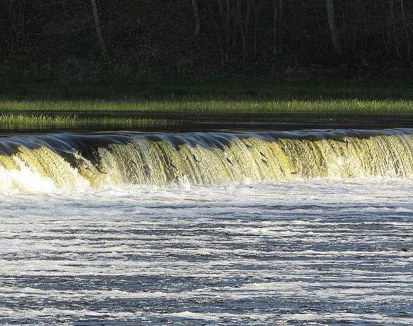 Латвия. Photo © Evita wiki / Wikimedia Commons. CC BY-SA 4.0