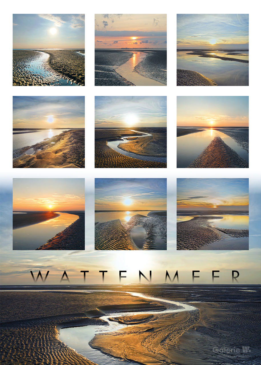 55537 Collage Wattenmeer